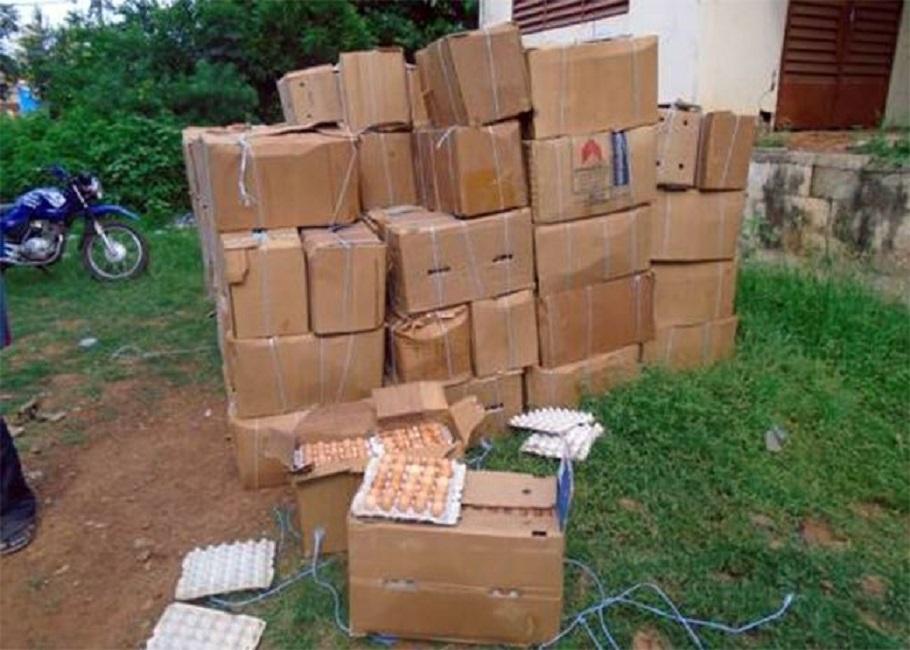 Gaoua : Saisie de 84 000 œufs de provenance douteuse