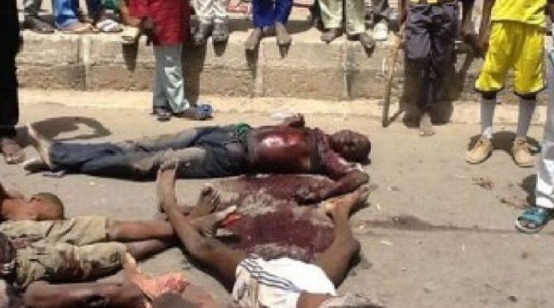 Nigeria: Six villageois dont leur chef égorgés par Boko Haram dans l'Etat de Borno
