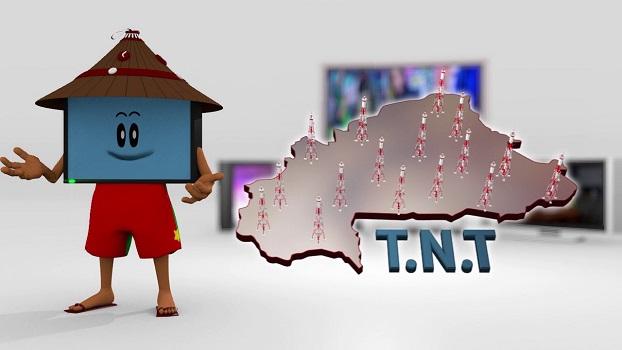 Retard dans le lancement de la TNT: les patrons de télévision très en colere