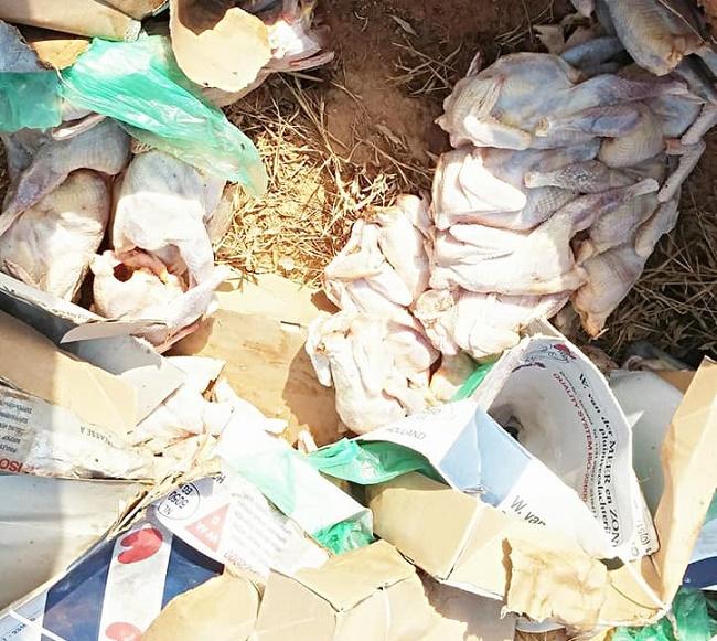 Poulets de chair: La Police saisit 450 carcasses à Saaba