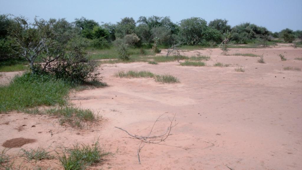 Mine d'or d'Inata(Sahel): trois personnes dont le fils du PDG enlevées par des hommes armés