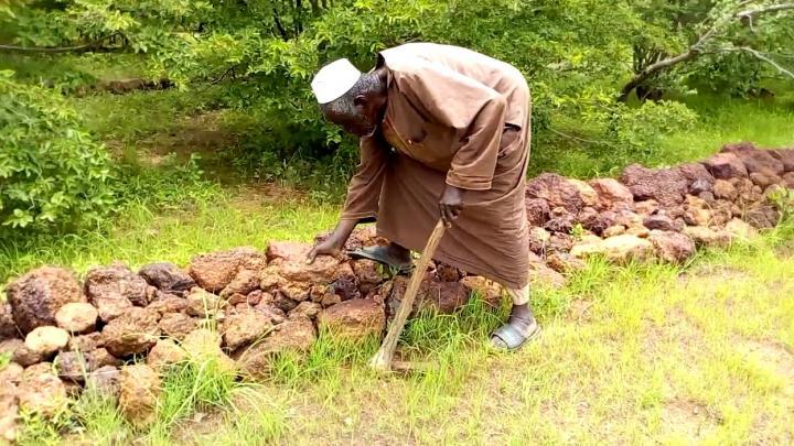 Prix Nobel Alternatif : Yacouba Sawadogo, l'homme qui a sauvé des milliers de paysans