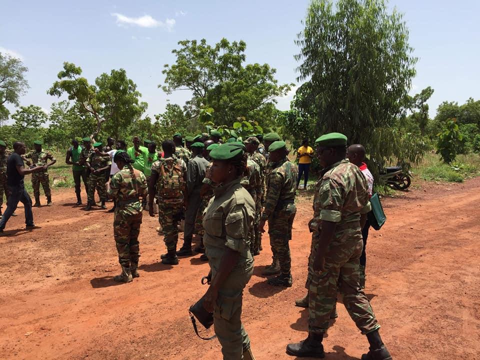 Affaire forêt de Kua :  Pour le MPP il faut sanctionner de l'action des forestiers