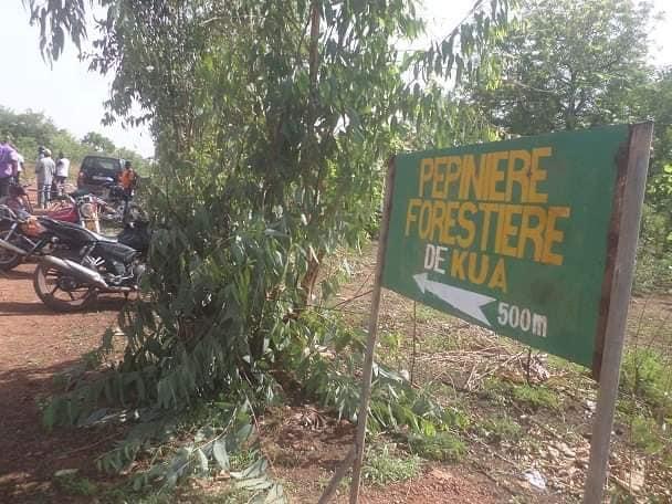 Déclassement de la forêt de Kua: le déclassement d'une partie de Kua est un très mauvais choix