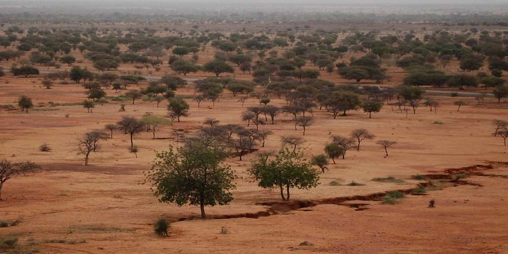 Sahel : Attaque meurtrière sur 4 infirmiers à Kelbo , une infirmière tuée